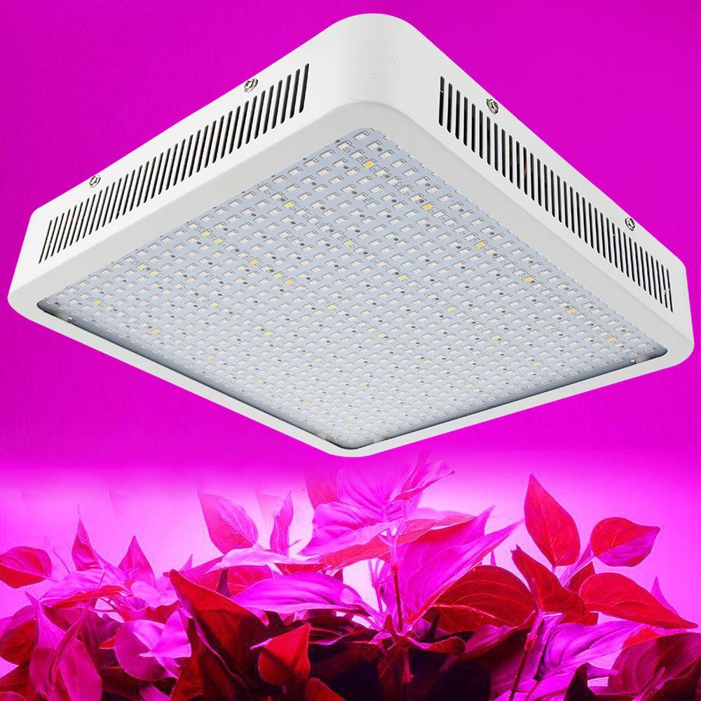 300 W 400 W 600 W 780 W 800 W LED à spectre complet élèvent la lumière pour la plante d'intérieur de serre et la lampe de croissance de plante de rendement élevé de fleur