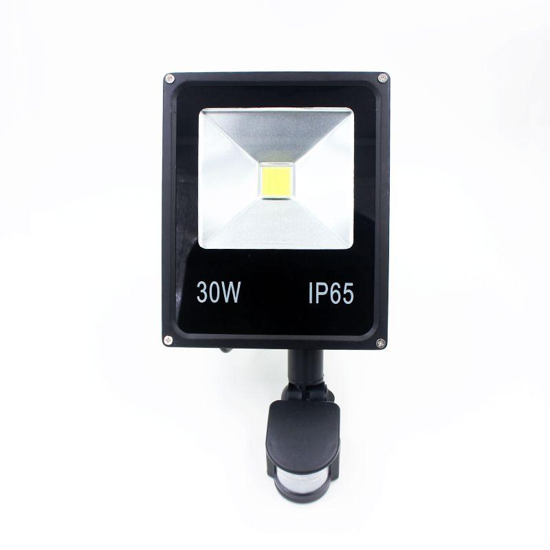 Newest 85-265V 30W Led Flood Light Led Spotlight New Type Black Shell PIR Motion Sensor Induction Sense Led Lamp Free Shipping