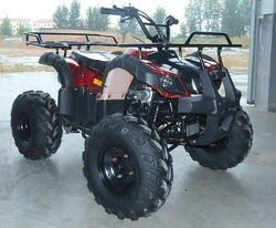 Small Beach Buggy 125cc (Price doesn't include the shipping cost)