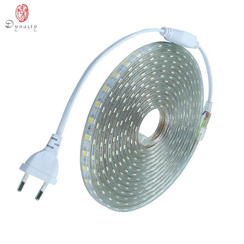 LED Flexible profil bande décoration extérieure étanche ménage dissimuler plafond jardin compteur 60 LED/mètre avec prise dynastie