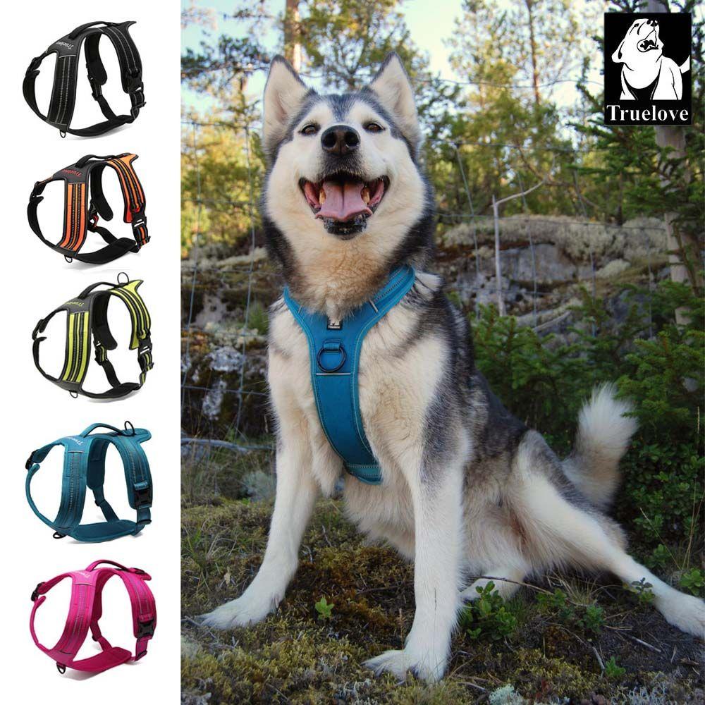 Truelove Sport Nylon réfléchissant sans tirer harnais pour chien aventure en plein air gilet pour animaux de compagnie avec poignée xs à xl 5 couleurs en stock usine