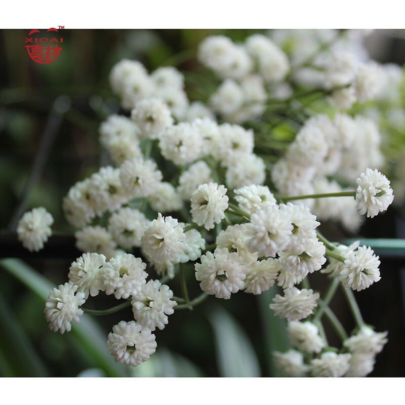 3/4/5/15 pièces fleurs artificielles gypsophile mariée Bouquet/fleurs de mariage têtes douces vrai toucher fleur babyrespirths