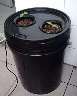20L Aeroponics pot with 2 net cup and Portable Heated Propagator! 2x Pot with cycle timer MIST AERO-POT cloner bucket