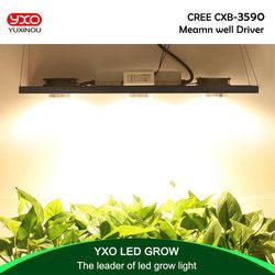 CREE CXB3590 300 W COB regulable LED crecen luz espectro completo LED lámpara 38000LM = HPS 600 W crece la lámpara planta de interior iluminación crecimiento