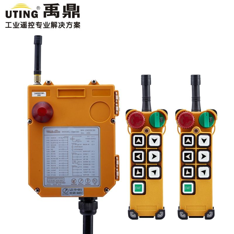 Telecontrol F24-6S magic remote control universal industrial wireless nice control for crane AC/DC 2transmitter and 1receiver