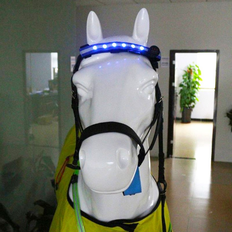 LED Horse Head Straps Night Visible Paardensport Equitation Multi-color Optional Horse breastplate Cheval Riding Equitacion F