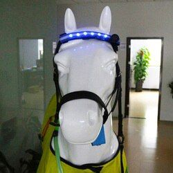 LED Horse Head Straps Night Visible Paardensport Equitation Multi-color Optional Horse breastplate Cheval Riding Equitacion C