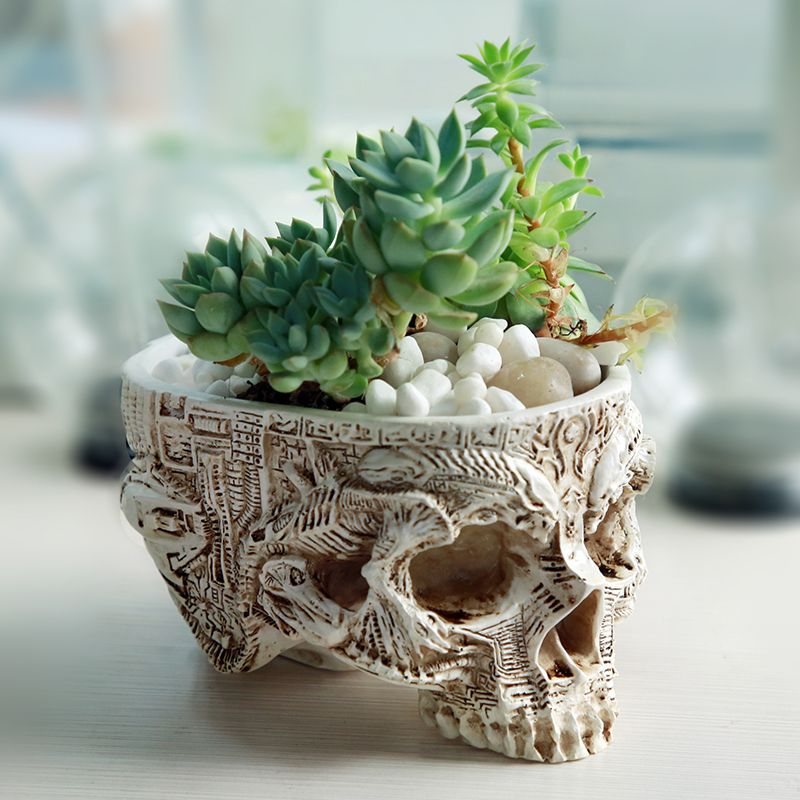 Hand Carved Skull Flower Pot Human Skull Bone Bowl Home <font><b>Garden</b></font> Decor Halloween Decoration