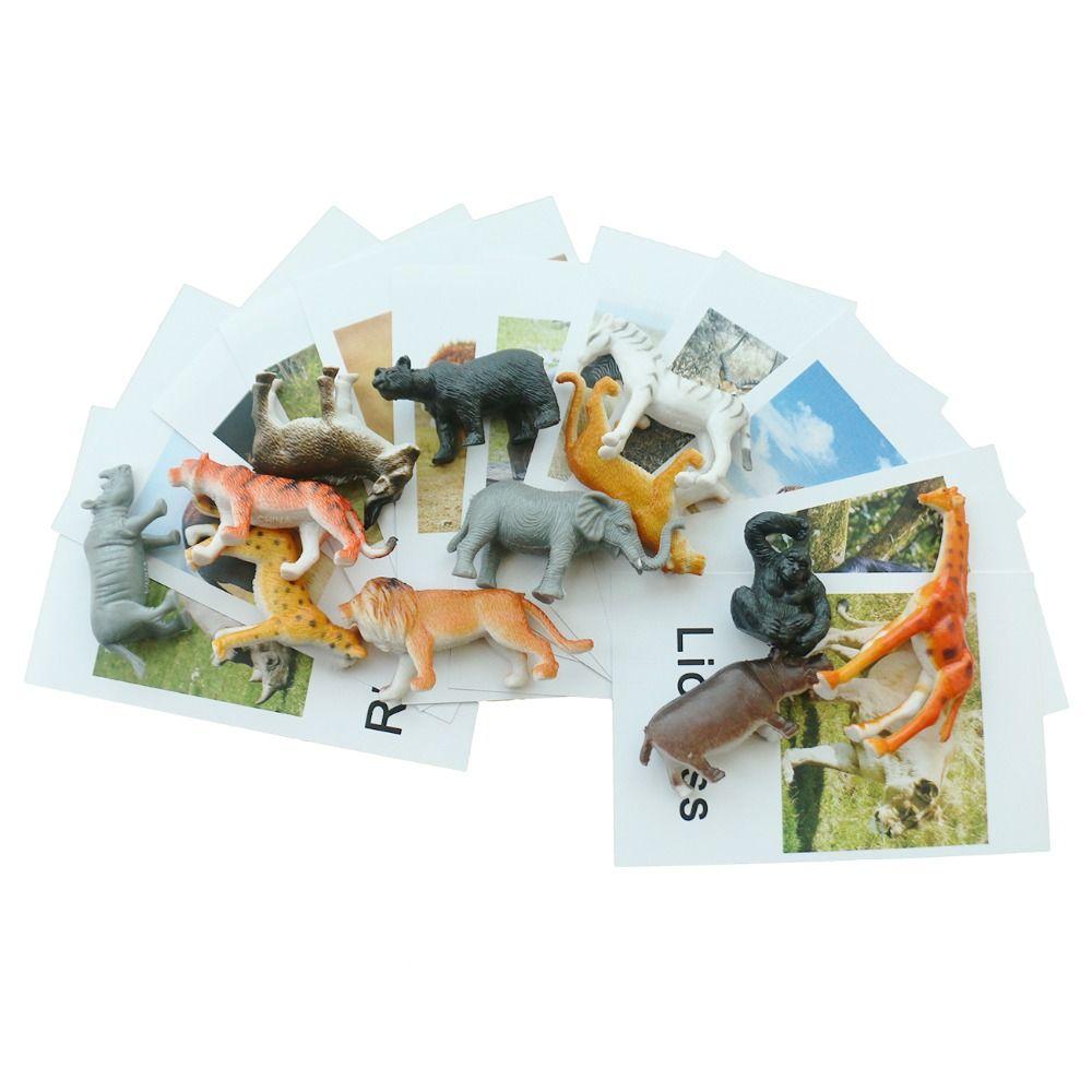 Montessori Infant Toys Montessori Animal Cards Language Materials Preschool Educational Learning Toys For Children YI3044H