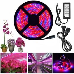 LED Grow Light Full Spectrum DC 12V 5050 Aquarium Greenhouse Plant Growing Light Set + adapter hydroponic apollo phyto lamp