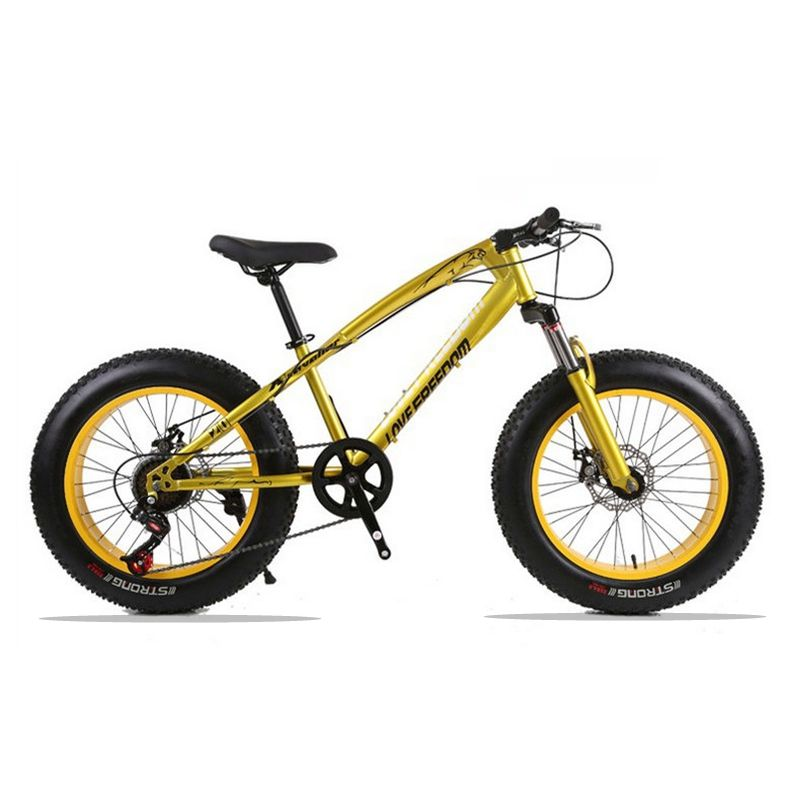 20X4.0 Mountain Bike Fat Bike Bicycle road bike 7/21 speed Front and Rear Mechanical Disc Brake Hard Frame Unisex Snow bike