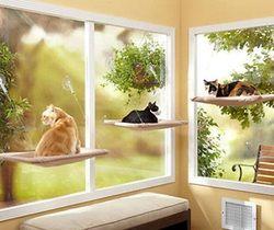 Hamaca gato ventana montado cama sofá cojín colgante estante asiento con succión