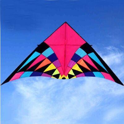 Livraison gratuite 2.5 m grand cerf-volant arc-en-ciel séduisant nylon ripstop jouets volants cerf-volant ligne dragon cerf-volant chaussette parafoil cerf-volant oiseaux