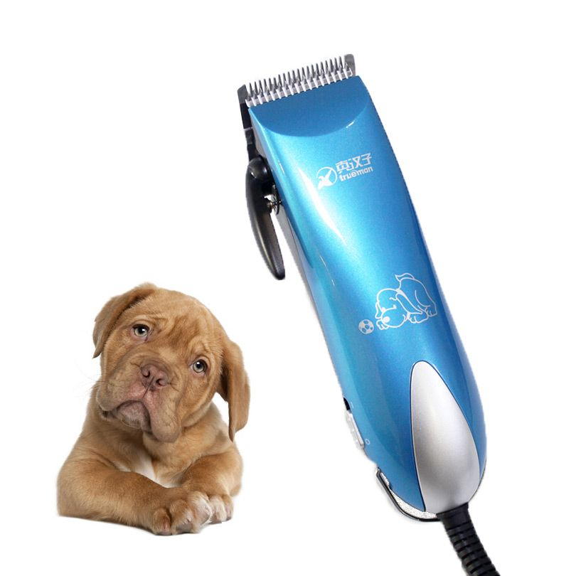 Professionnel Pet ciseaux chien rasoir 25 w tuile haute puissance cheveux tondeuse lapins pour chat toilettage tondeuse électrique rasage coupe.