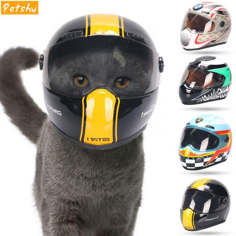 Casques de chapeau de chat de chiot de pettimide petit animal frais de mode casquettes extérieures en plastique pour des motos accessoires de Photo protègent l'accessoire d'animal familier