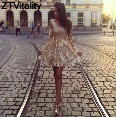 ZTVitality 2017 Champagne Colour Women Dresses Fashion Patchwork Vestido De Festa Sexy Backless Vestidos Embroidery Party Dress
