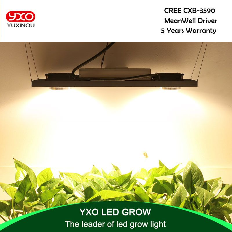 CREE CXB3590 200W 36000LM 3500K 5000K Dimmable COB LED Grow Light Full Spectrum Growing Lamp Indoor Plant Growth Panel Lighting
