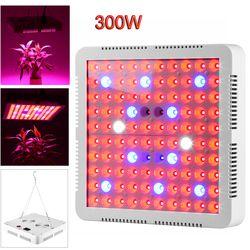LED crece la luz Fito lámpara 300 W 50 W 45 W 10 W 5 W espectro completo para invernadero de interior crecer tienda de plantas crecen la luz llevada