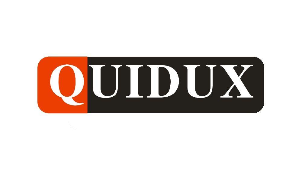 QUIDUX display screen for CAR DVR
