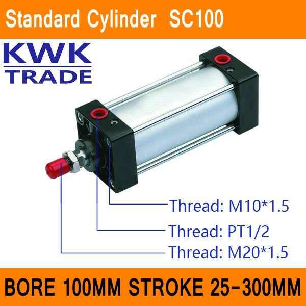 SC100 Standard Air Cylinder Mini Valve CE ISO Bore 100mm Strock 25mm to 300mm Stroke Single Rod Double Acting Pneumatic Cylinder