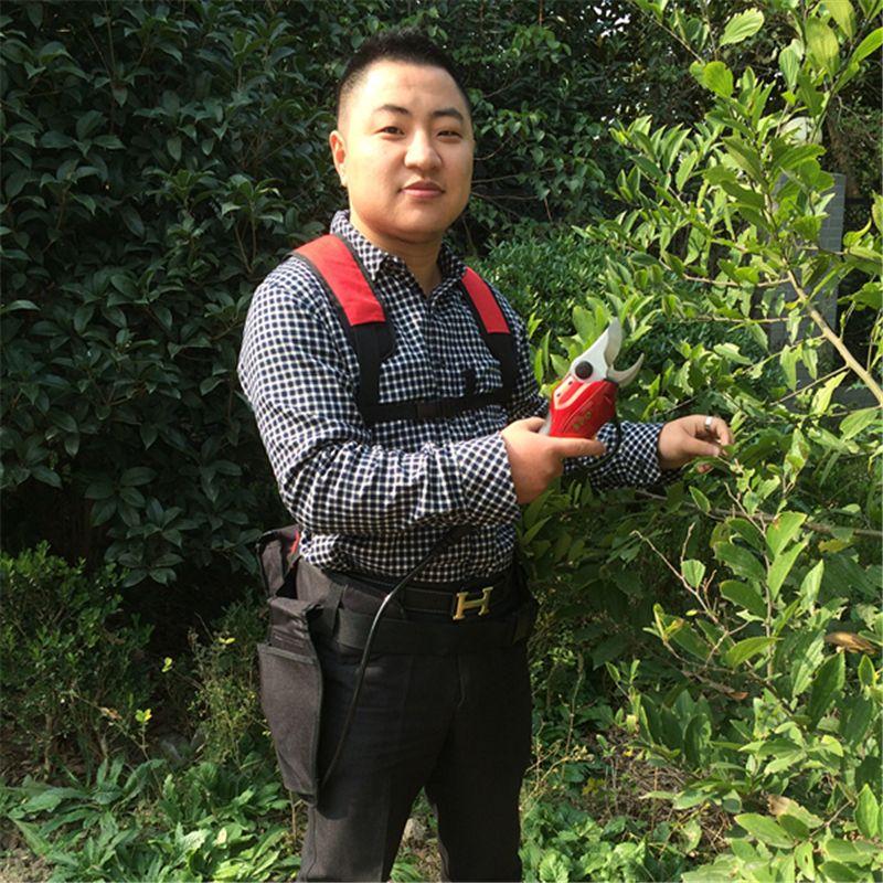 Batterie Betrieben Gartenschere, elektrische baum gartenschere, power gartenschere, Lithium-Batterie Elektrische Gartenschere für trauben, apple