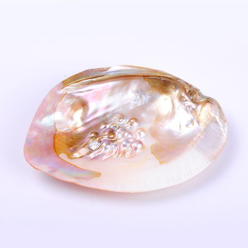 1 pc 13*18 cm AA qualité naturelle eau douce perle huître coquille de palourde brunir en douceur pour l'artisanat de bijoux