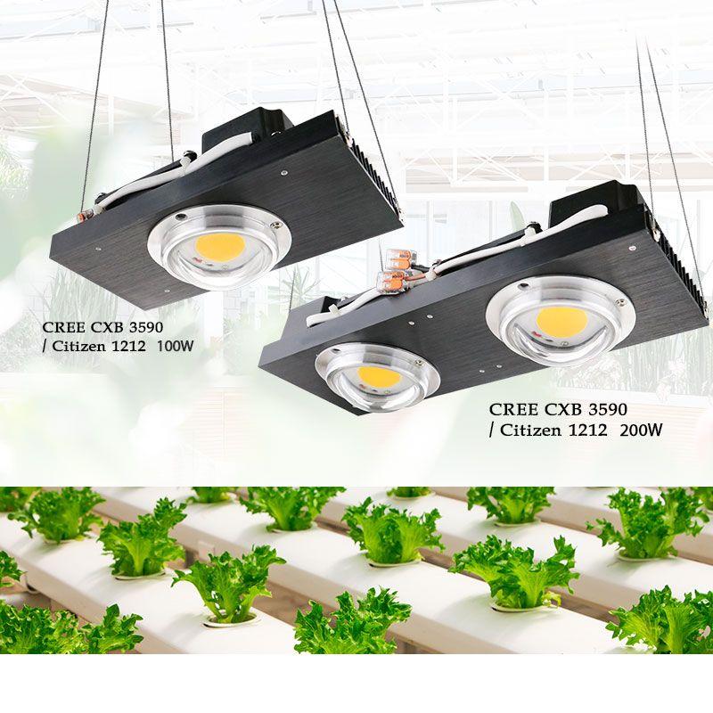 CREE CXB3590 COB LED Wachsen Licht Gesamte Spektrum 100 W 200 W Citizen LED Anlage Wachsen Lampe für Innen Zelt gewächshäuser Wasserkulturanlage