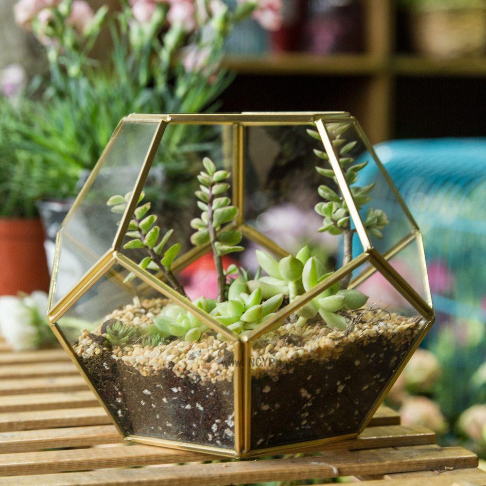 Présentoir de table succulente fougère mousse Pot de fleur Air plante planteur boîte fée jardin polyèdre verre géométrique Terrarium bonsaï