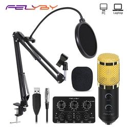 FELYBY Bm 900 USB Condenser Microphone Professional Karaoke Studio Microfone for Computer/Laptop/PC Recording and Broadcasting