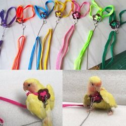 Let's PET colorido Parrot Bird leash al aire libre arnés ajustable cuerda formación Flying banda cruzada