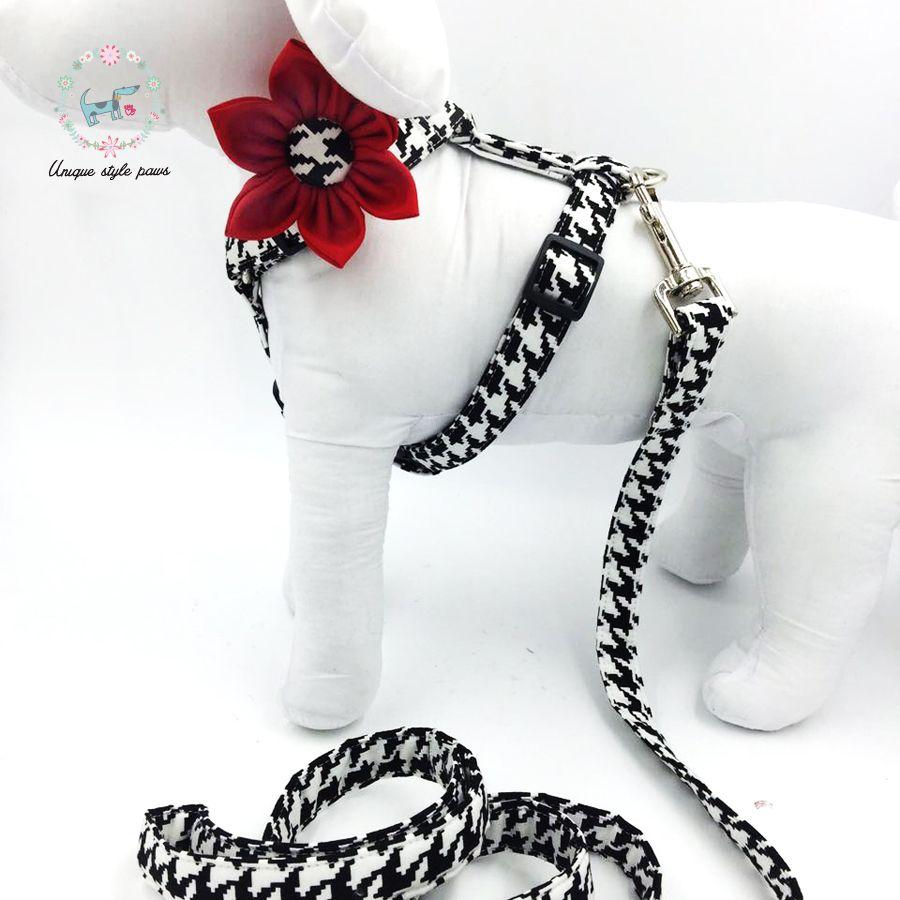 Harnais pour chien avec fleur et laisse de base pour chien boucle réglable lavable en Machine collier pour animaux de compagnie S, M, L