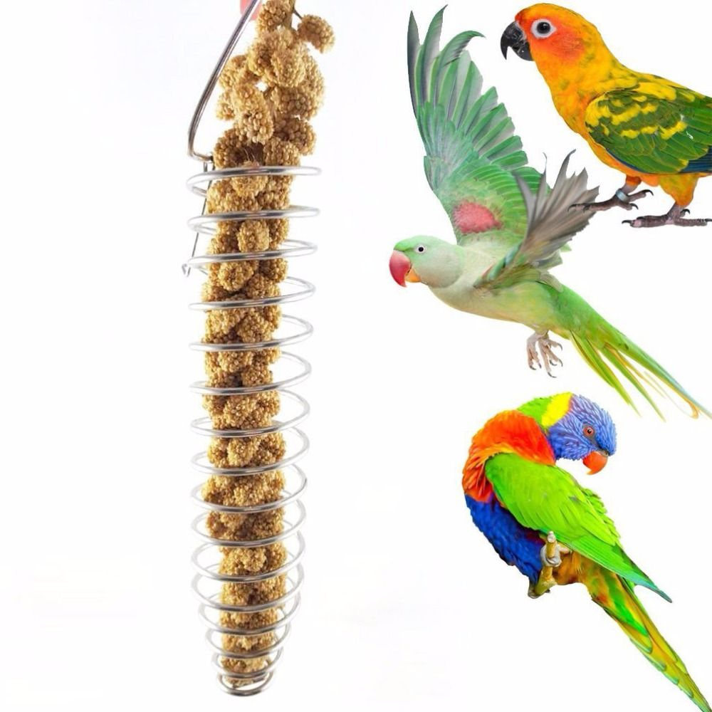 25cm Bird Toys Stainless Steel Parrot Food Basket best for Putting Fruit Vegetable Millet Suitable for Small Medium Large Bird