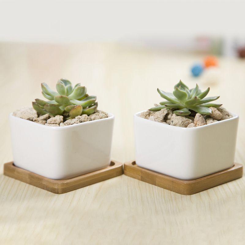 2 Ensembles Carré Blanc En Céramique Planter Succulent Zakka Style Succulentes Pots De Bureau Pot De Fleur Décoration de La Maison (2 Pots + 2 Plateaux)