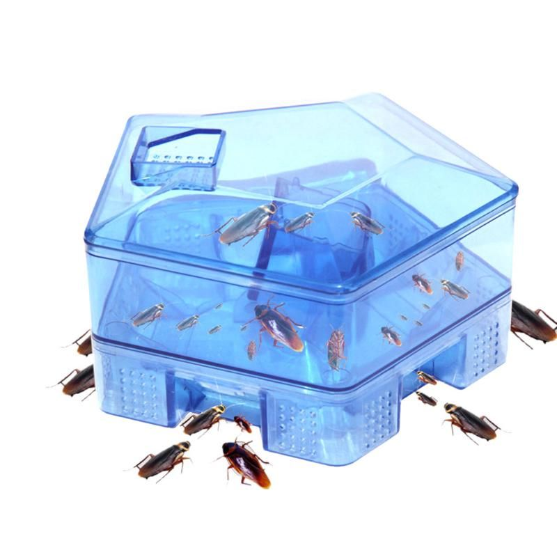 Kitchen Cockroach Trap Box Home Cockroach Killer Bait Traps No Pollute Effective Pesticide For Restaurant Office Indoor