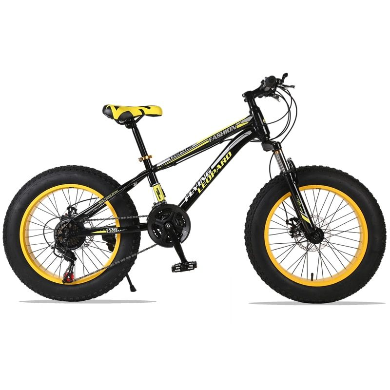 mountain bike 21 speed 2.0X4.0