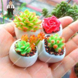 Шт./пакет 100 смешивания Echeveria видов суккуленты комнатные растения бонсаи цветы великолепный массив цветов карликовые деревья цветок для Garde