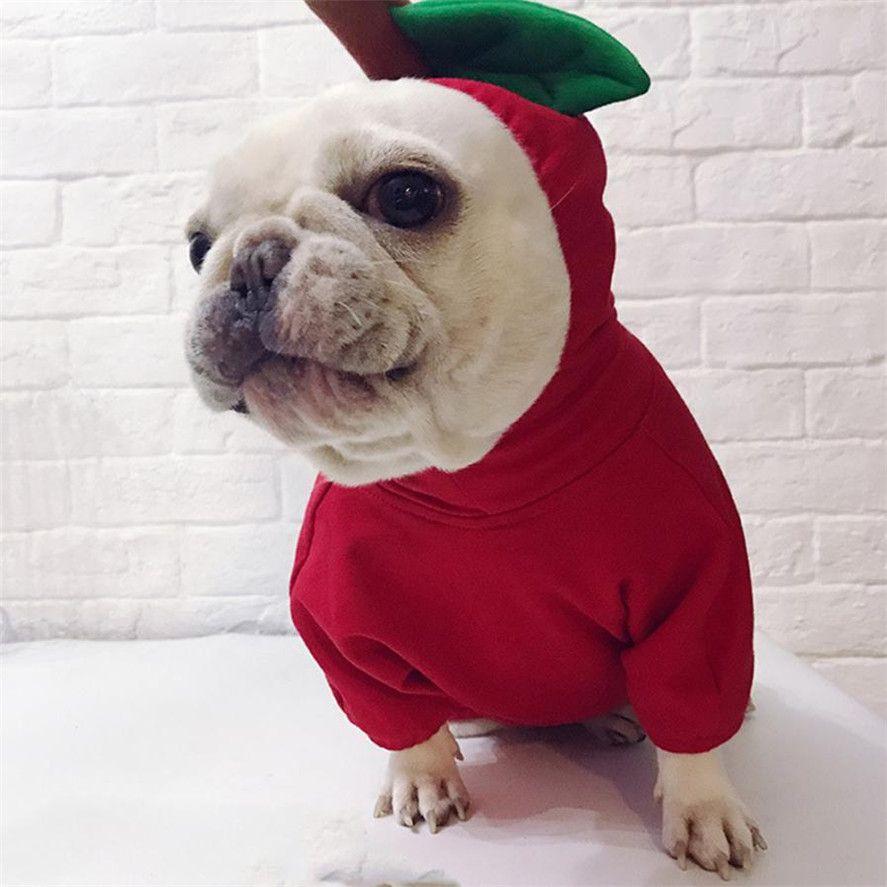 Neue Hunde Pullover Für Weihnachten Decor 1 stück Weihnachten Haustier Hund Gedreht Kleidung Apple Nette Mode Sweatshirt Weihnachten Präsentieren 32