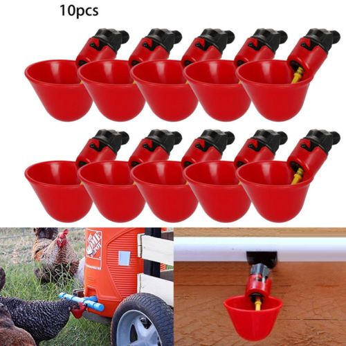 Cost-effective 10Pcs Chicken Drinker Cups Practical Poultry Water Drinking Cups Chicken Plastic Automatic Drinker Red