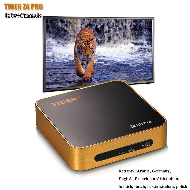 TIGRE Z400PRO Arabe IPTV 1 Année Abonnement Satellite TV Récepteur Soutien 4 k Affichage
