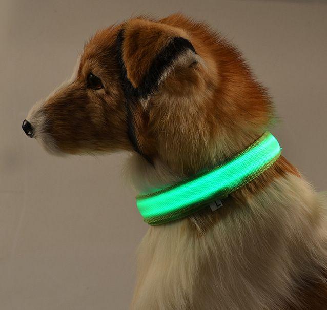 LED collier de chien teddy laisse harnais mignon pet colliers Petit chiens nuit sécurité clignotant lumineux lueur fournitures pitbull chihuahua