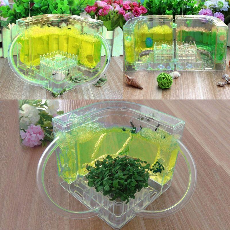 OOTDTY 3D Ant Farm Educational Maze Live Feeding System Ants Habitat World Pet Villa Blue/Green/Yellow/Pink/Purple