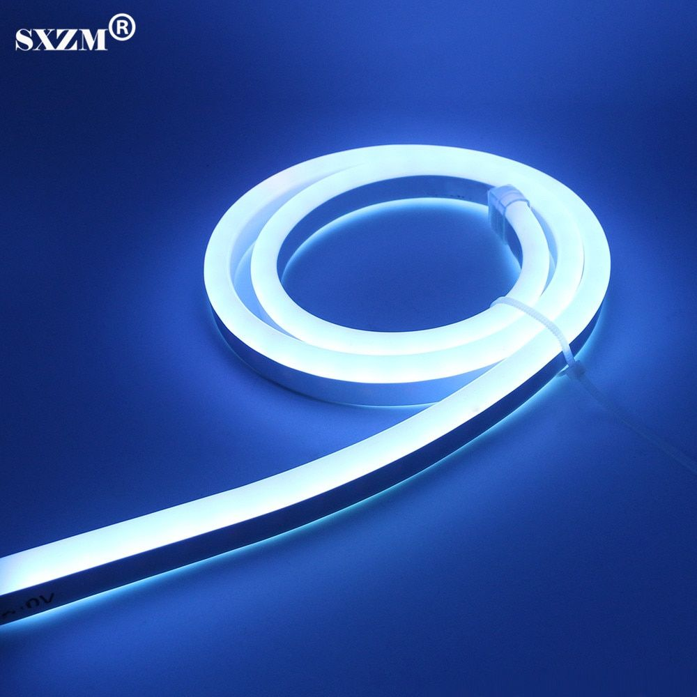 Sxzm AC220V Неон СИД свет smd5050 80LED/M фея освещения IP67 Водонепроницаемый с вилкой ЕС, контроллера RGB наружной отделки