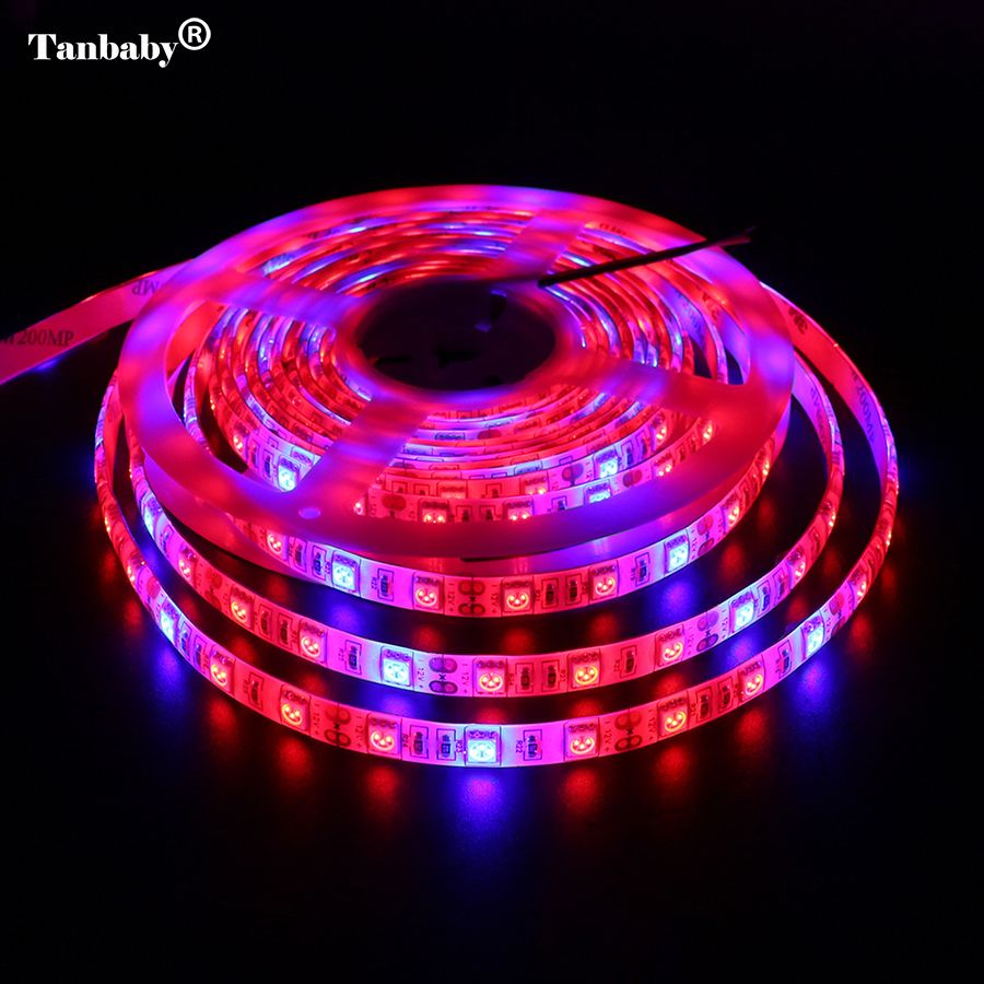 Tanbaby 5M LED Plant Grow Strip Light DC12V Full Spectrum SMD 5050 Red Blue 3:1 4:1 5:1 Flexible Rope for Aquarium Greenhouse