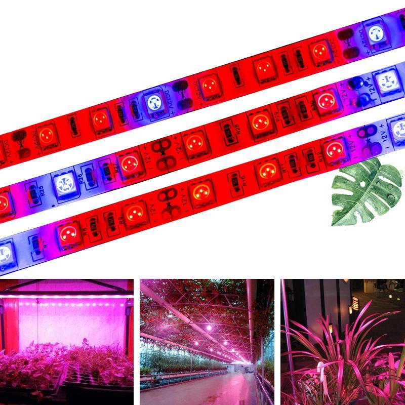 SMD 5050 Élèvent Des Lumières DC12V Croissante A MENÉ La Bande 5 m LED Bande IP20 IP65 Lumière De Croissance Des Plantes pour Serre Hydroponique plante