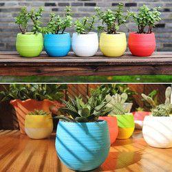 new  Mini Colourful Round Plastic Plant Flower Pots Home Office Decor Planter *30 hogar cocina 2018 kitchen utensils hot sale