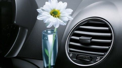 Clear Bud Vase (Right Hand Drive) For Vw New Beetle