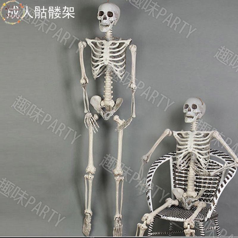 Festivel haunted haus landschaft Halloween requisiten terrorist 170 cm skeleton kunststoff schädel knochen tasche körper kammer von dekoration