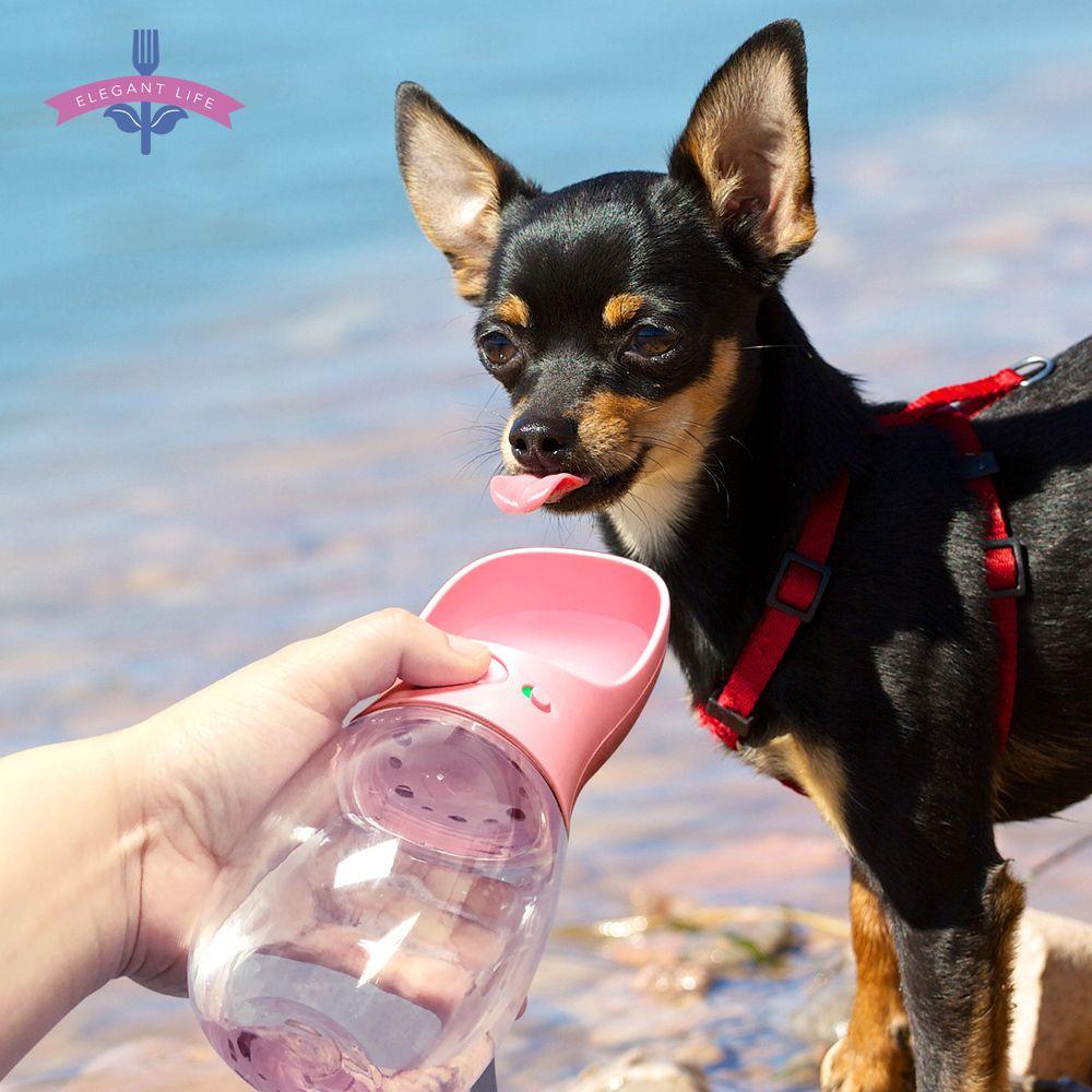 350/550ML Portable Pet chien bouteille d'eau pour voyage chats chiens chiot bol à boire extérieur Pet distributeur d'eau mangeoire étanche