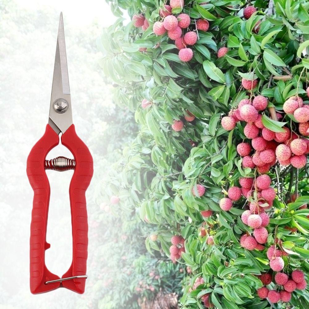 Plant Pruning Scissors Garden Cutter Gardening Bonsai Tools Grass Flower Shears Secator Grafting pruner Hand Pruner Tool new