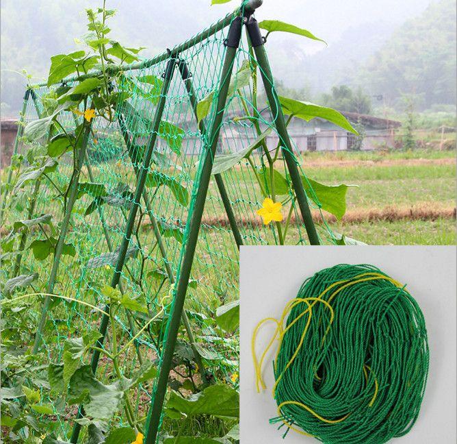 Millipore Ivy Klettergerüst Hauptgarten Net Obst Pflanzen Zaun Kunststoff Nylon Net 1,8*1,8 Mt/2,7 Mt/3,6 Mt Mesh Net 10 CM Grid